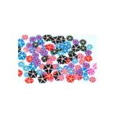 FIMO MIX flower - kvetinky hviezdičkovité